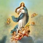 Asunción de la Virgen (ft img)