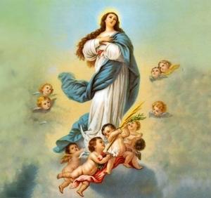 novena a la asunción de la virgen maría reina del cielo