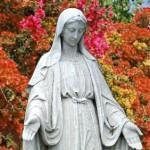 Nuestra Señora (ft img)