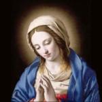 Virgen María 8 (ft img)