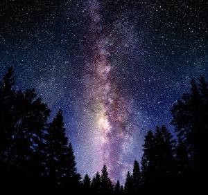 camino de estrellas (ft img)